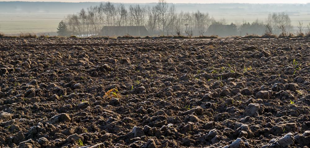 Drogie wapnowanie: kto pomoże rolnikom zlubuskiego?