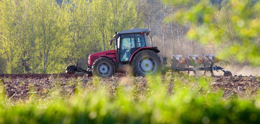 Rolnictwo ekologiczne: więcej czasu na składanie wniosków
