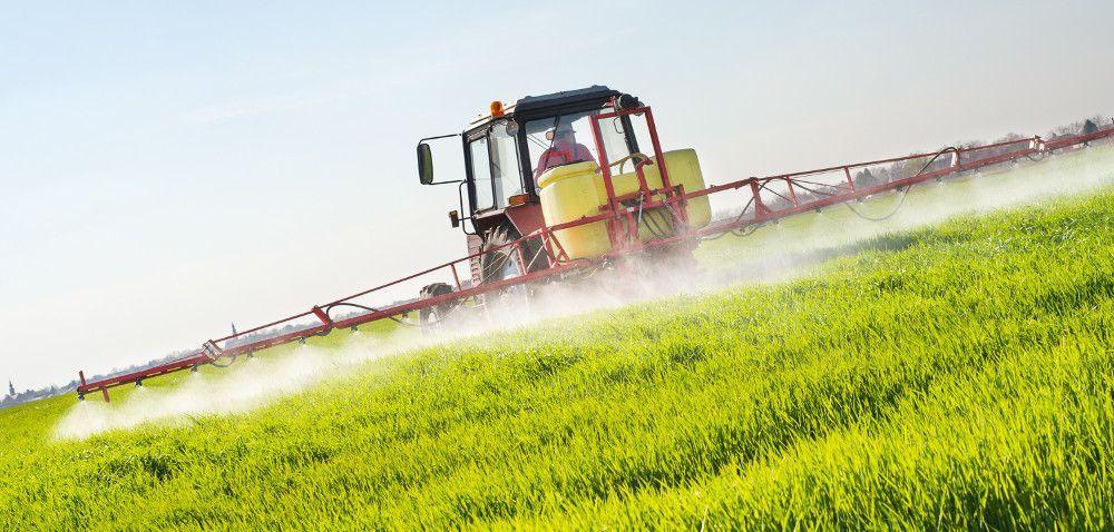 Uprawy ekologiczne – jakie środki ochrony roślin?