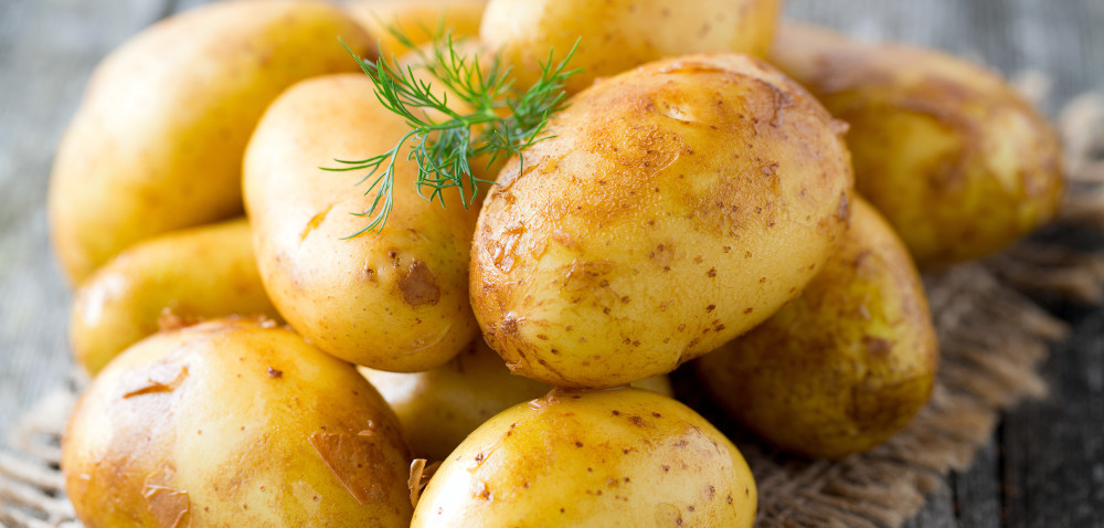 Już są młode polskie ziemniaki! Czy są opłacalne?