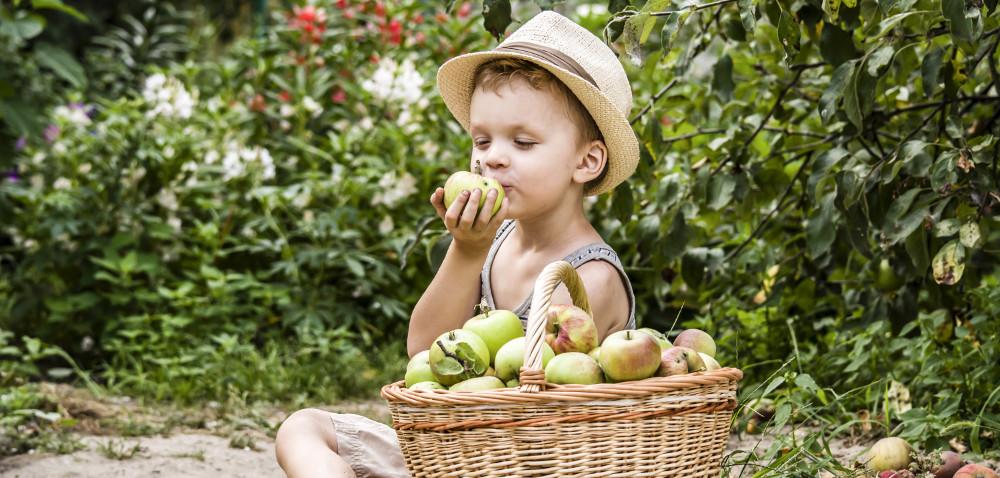 Dzieci na wsi: nie każde atrakcje bezpieczne wwakacje