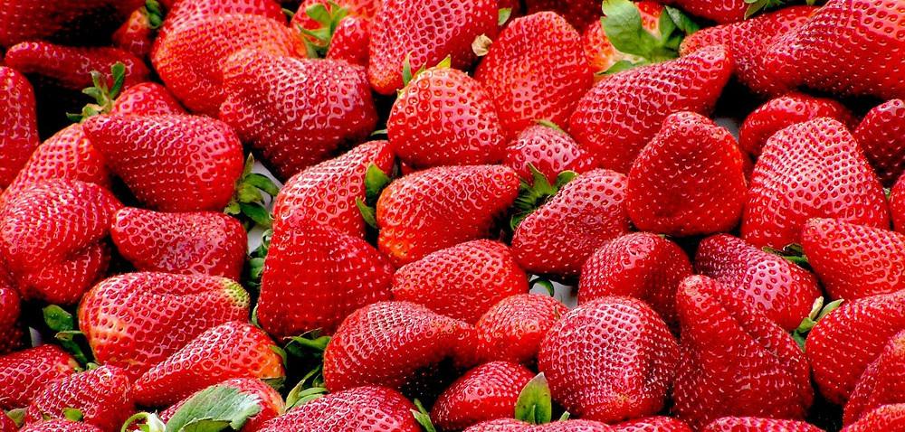 Skup owoców Real kontra rolnicy – kto wygrał?