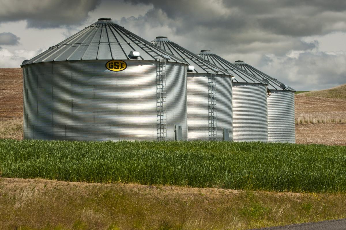 Inwestycja wsilos pozwala na długie przechowywanie ziarna, ale wymaga od rolnika sporych nakładów finansowych.