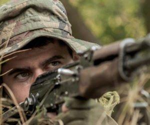 Polski Związek Łowiecki – dymisja za polowania na dziki?