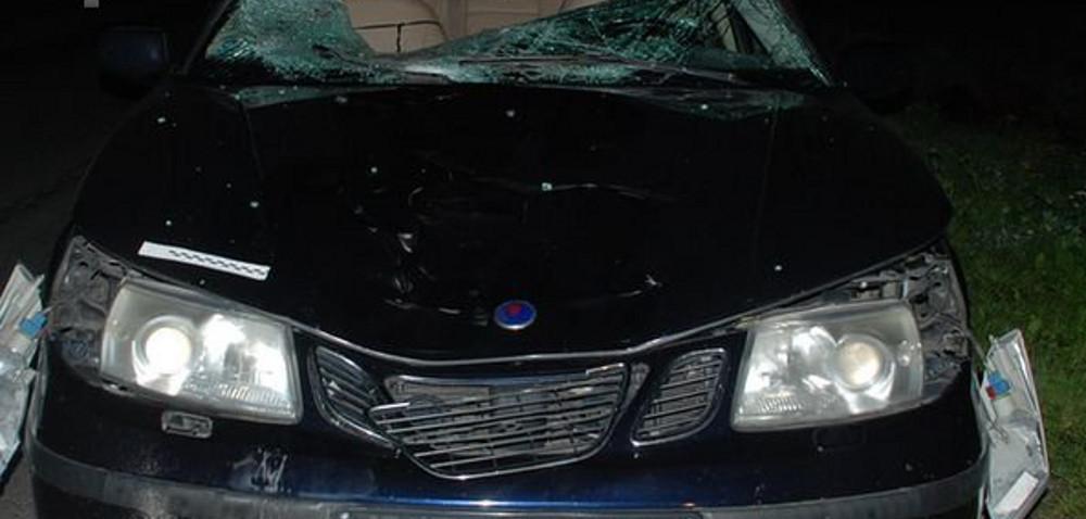 Niezabezpieczone gospodarstwo: konie wbiegły pod koła samochodu