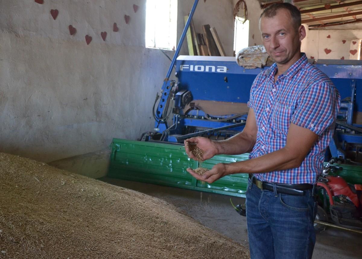 rolnicy wiedzą ziarno