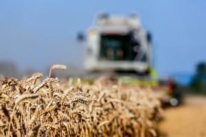 skargi na rolników