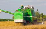 ceny zbóż najniższe od 3 lat