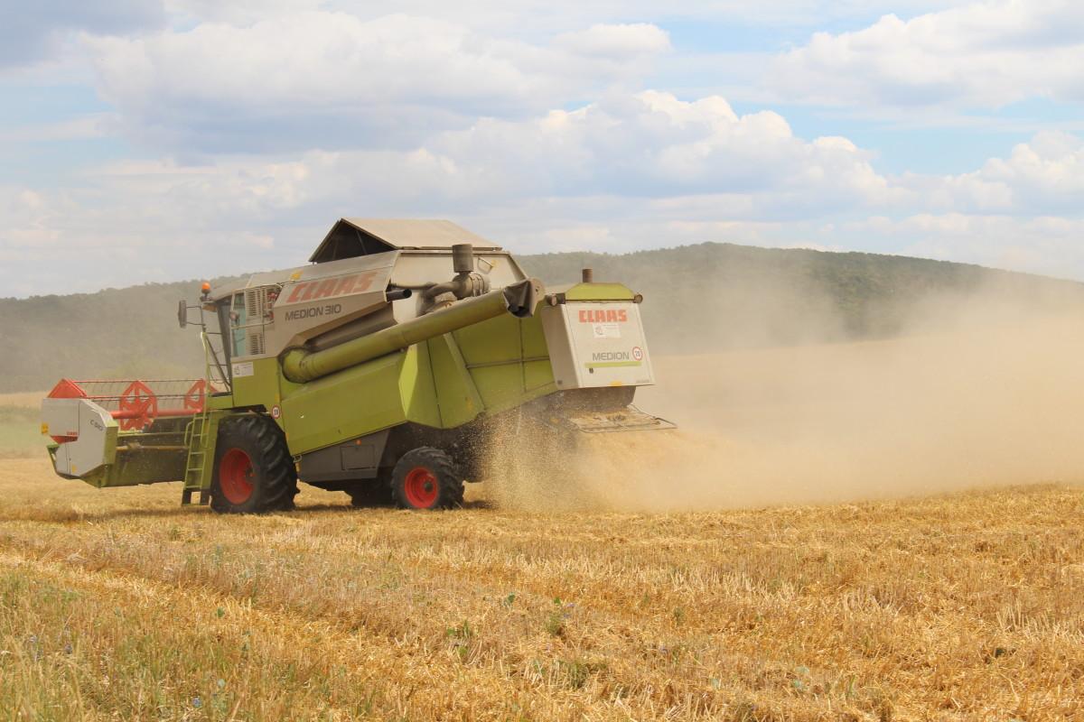 W zgodzie ztechnologią: postaw na nasiona kwalifikowane!
