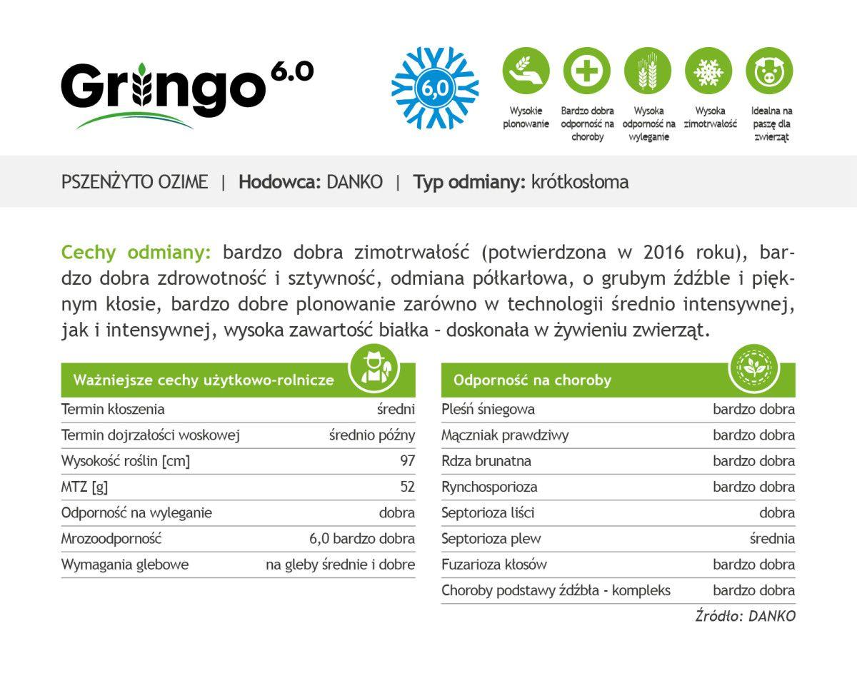 Czym charakteryzuje się pszenżyto ozime Gringo?