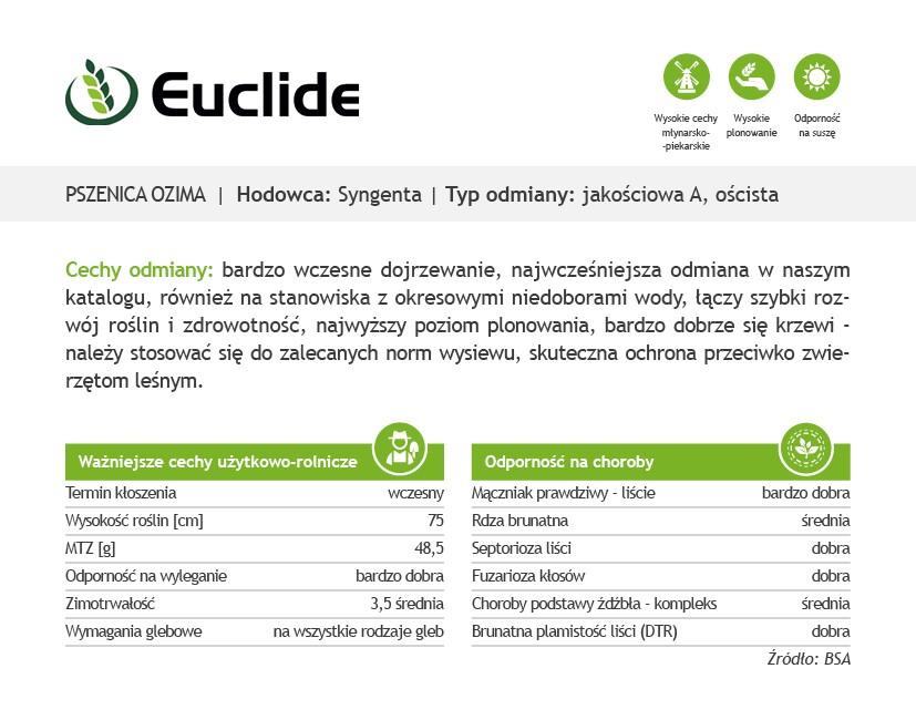 Pszenica ozima Euclide