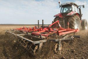 Najważniejszy element zimotrwałości zbóż irzepaku