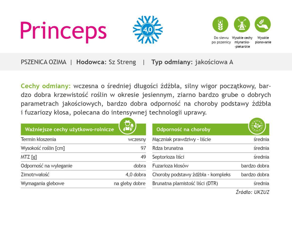 Czym charakteryzuje się pszenica ozima Princeps?