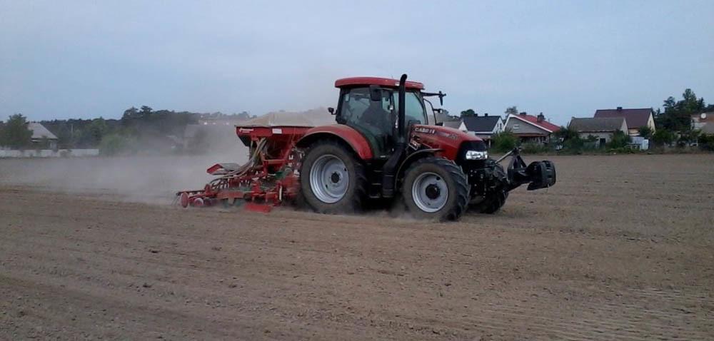 Prawidłowy siew: ile nasion wysiać?