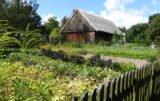 Z wizytą w skansenie: tak kiedyś żyła polska wieś