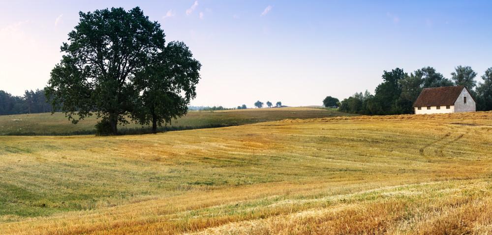 """Jesienne Targi Rolnicze """"Wszystko dla Rolnictwa"""""""