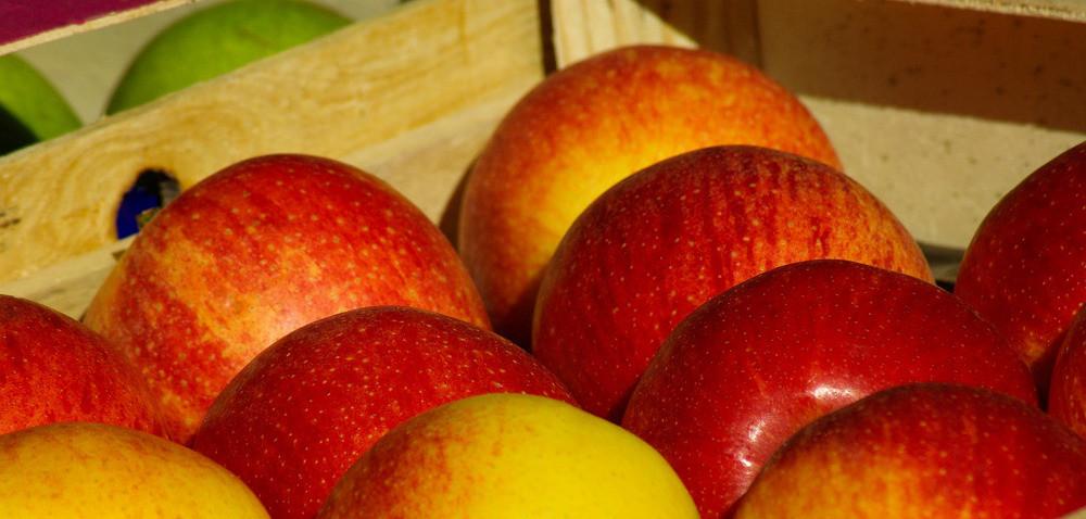 Jak kupić dobre izdrowe jabłka?