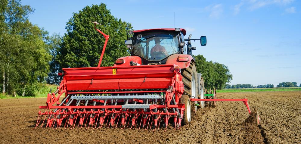 Jak obliczać normy wysiewu zbóż ozimych – przypominamy!