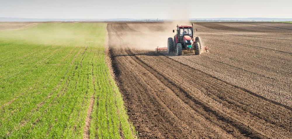 Jesteśmy wogonie Europy – kondycja gospodarstw rolnych wPolsce