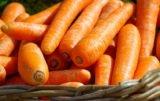 rynek warzyw