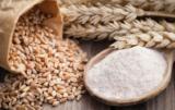 prognozy zbóż