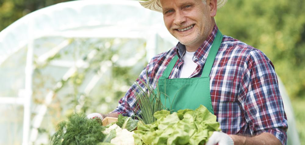 Sprzedaż żywności zgospodarstwa: coraz bliżej do nowej ustawy