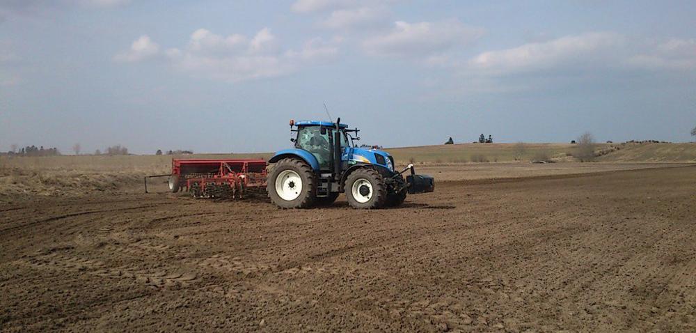 Opóźnione zasiewy zbóż: jak zrobić to dobrze?
