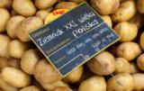 ziemniaki xxi wieku