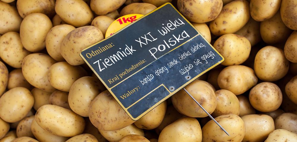 Jakie są ziemniaki XXI wieku?