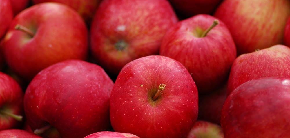 Można chłodzić jabłka eksportowane do Indii