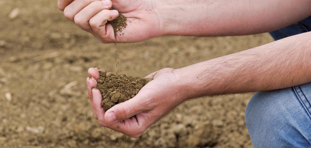 Gdzie można zbadać glebę?