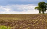 agroklimat w Polsce