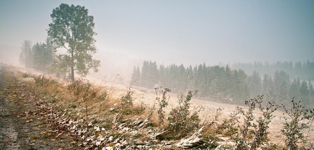W niektórych częściach kraju spadł pierwszy śnieg