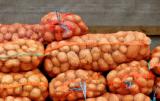 Jakie są wyzwania rynku ziemniaka?