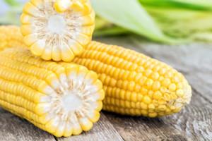 kupno kukurydzy