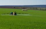 Jak przymrozki wpływają na stosowanie herbicydów?