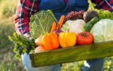Ustalenia Rady Ministrów UE: łańcuch żywnościowy i wpływ rolnictwa na klimat