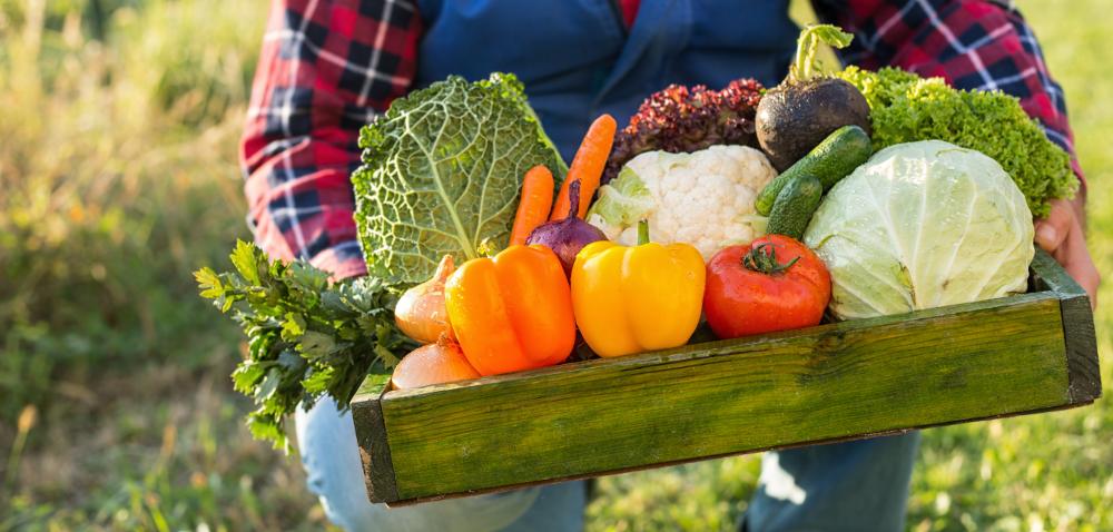 Ustalenia Rady Ministrów UE: łańcuch żywnościowy iwpływ rolnictwa na klimat