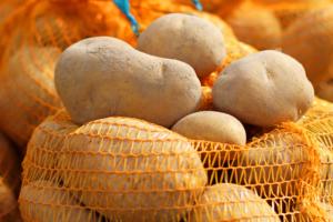 Niższe zbiory ziemniaków wPolsce