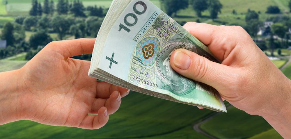 Ile zapłacimy za hektar ziemi w2017? Spodziewany mniejszy wzrost cen!
