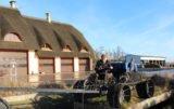 Sposób na rolnictwo ekologiczne: dachy kryte strzechą