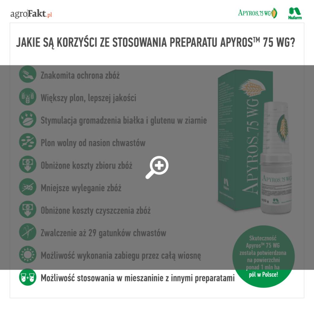 herbicyd apyros zwalczy wiosną chwasty wzbożach
