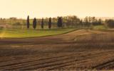 Nawożenie fosforem i azotem - o czym należy pamiętać?
