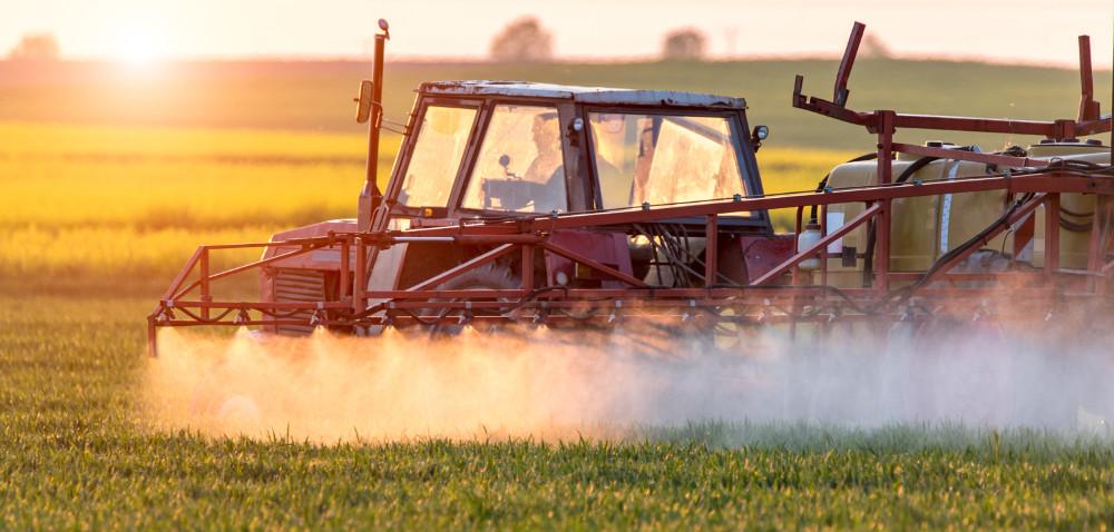 Zwalczanie chwastów wzbożach: jaki herbicyd na wiosnę?