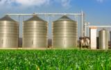 Co czeka producentów zbóż w 2017?