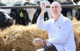 Choroba guzowatej skóry bydła: istnieje plan awaryjny?