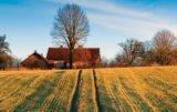 Krajowy Ośrodek Wsparcia Rolnictwa rozpocznie działalność od września