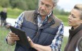 VitalFields obniża ceny dla gospodarstw większych niż 40 ha!