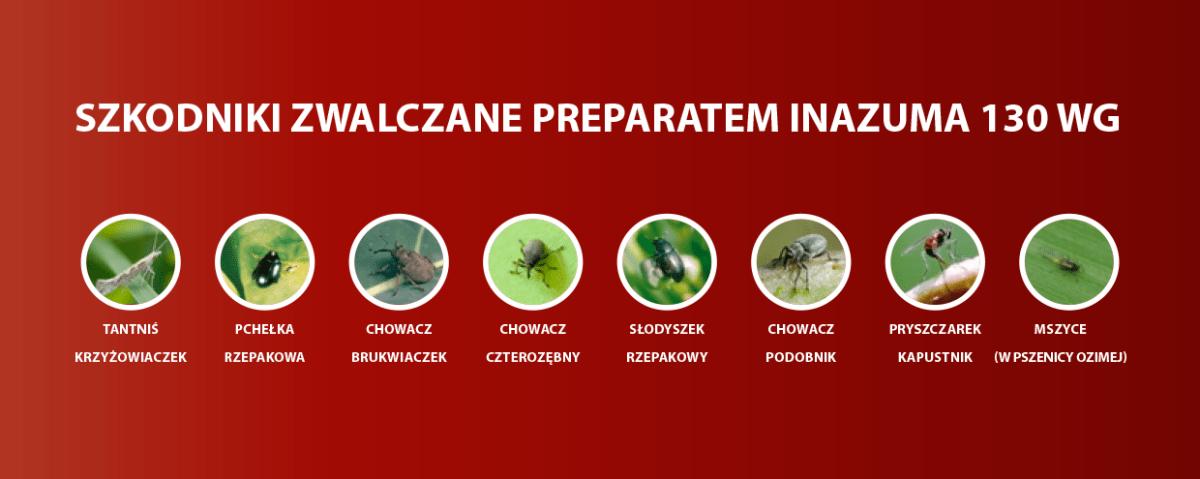 szkodniki zwalczane przez preparat Inazuma