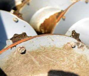ślimaki wpoziomym wozie paszowym
